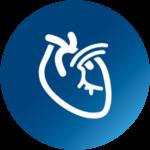 primecare_centro_medico_paranagua_ico_angiologia